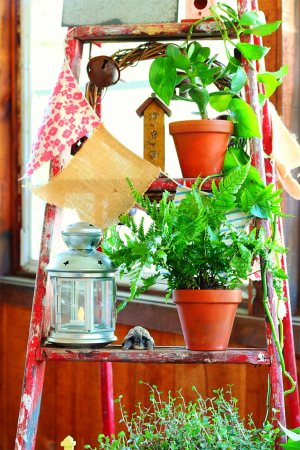 thang cũ trồng cây