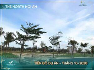 Hinh Anh Thuc Te Bac Hoi An 2