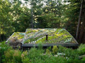 thiết kế mái nhà (14)